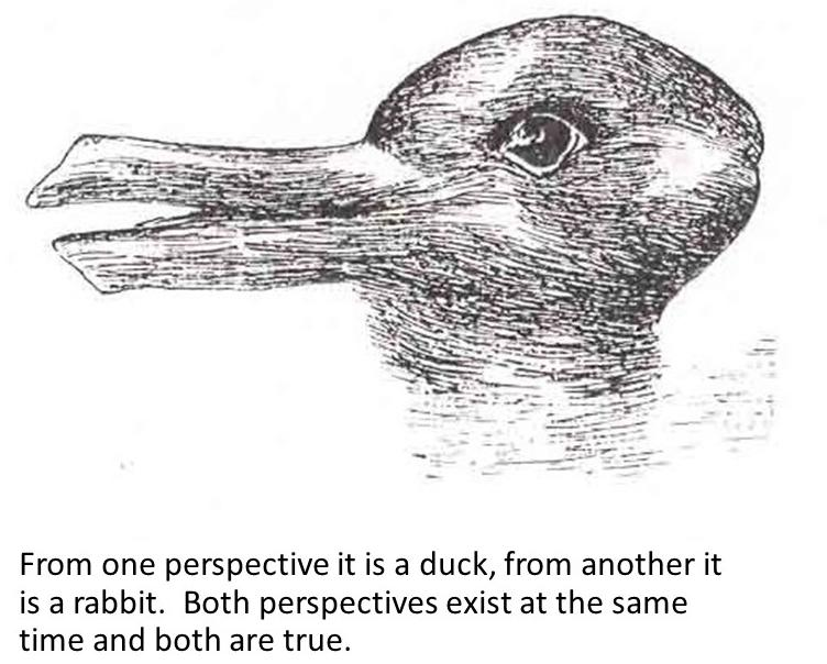 /// What is Perspectives?