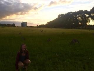 Student on exchange in Australia with kangaroos