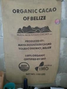 Organic Cacao of Belize